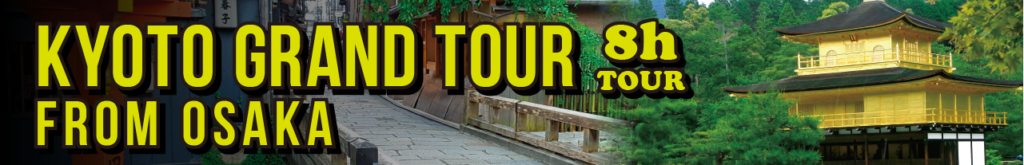Kyoto grand tour from Osaka 8h tour