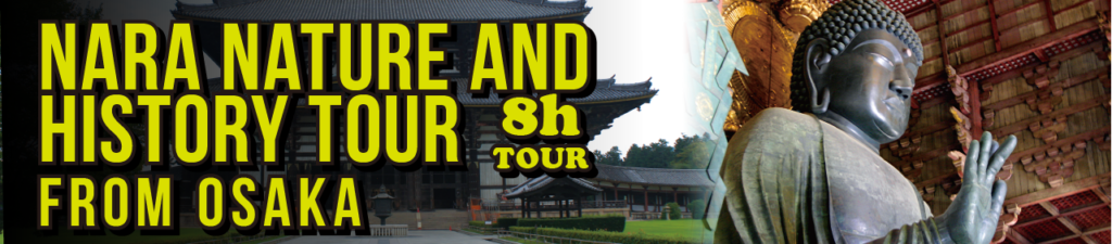 Nara nature and hisotry tour from Osaka 8h tour